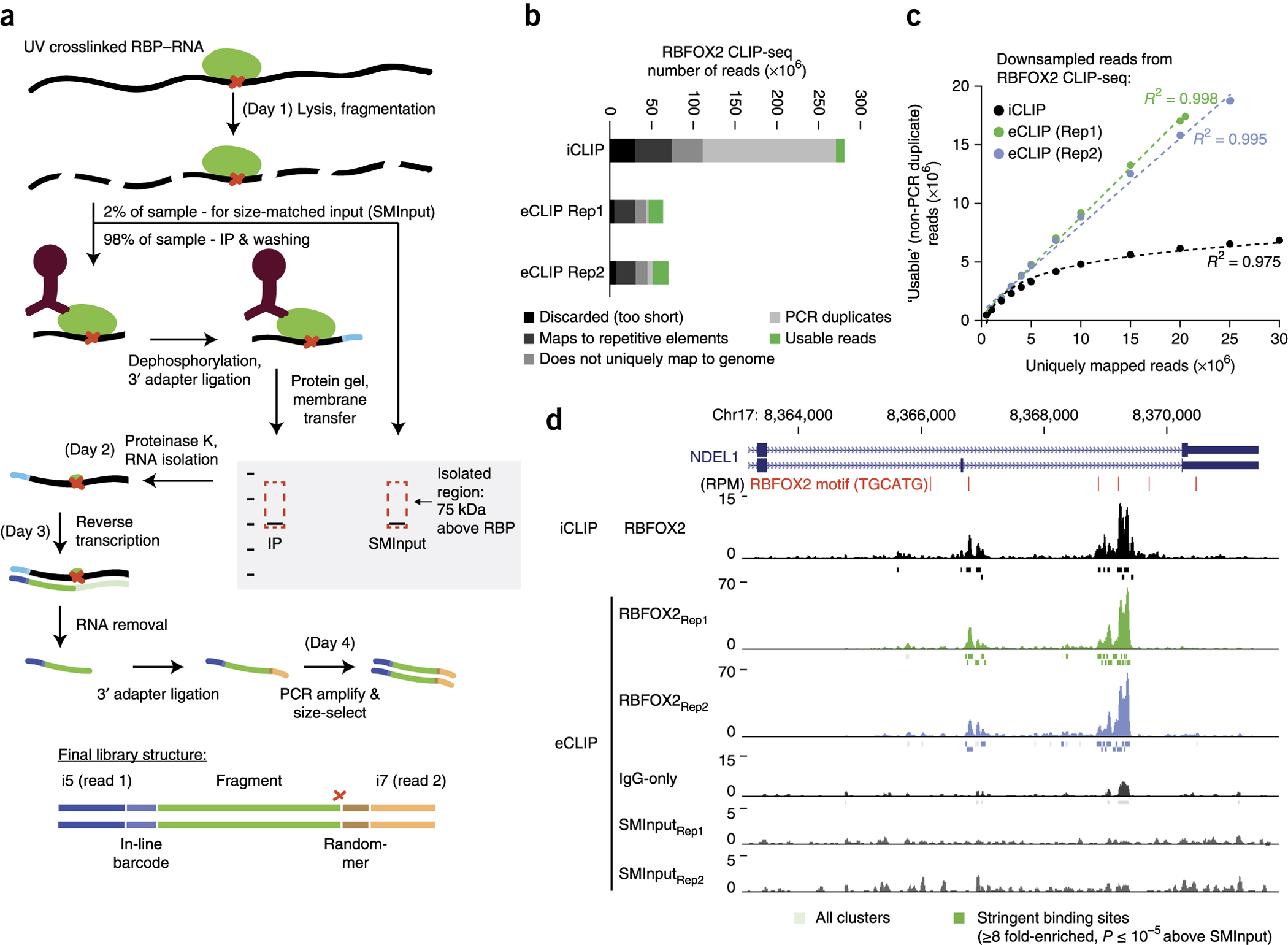 Improved identification of RNA binding protein (RBP) targets by eCLIP-seq.