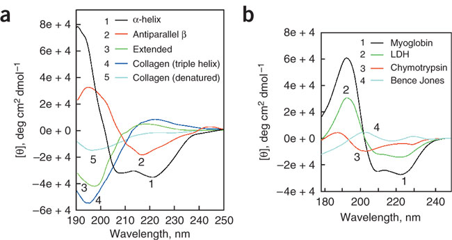 CD spectra of polypeptides and proteins with representative secondary structures.