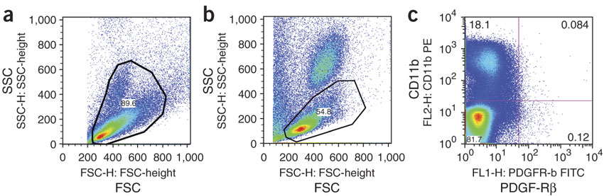 Figure 2 : Representative flow cytometry plots using FlowJo software to analyze cells from lung tissue or from rat peripheral blood.