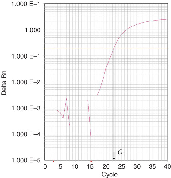 Real-time PCR output, calculation of C T.