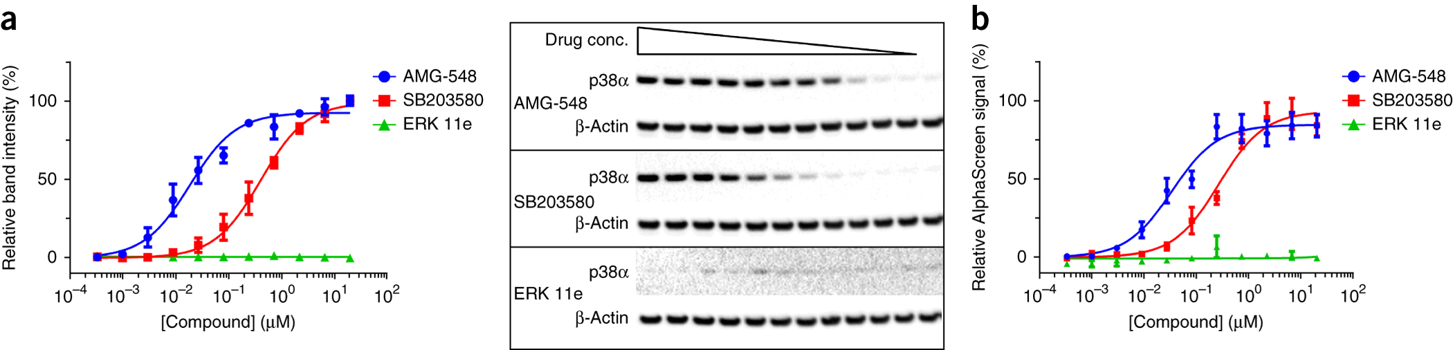 Illustration of the amount of stabilized soluble p38α accessible for detection in the presence of increasing concentrations of compounds in HL-60 cells.